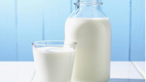 latte ant 470x264