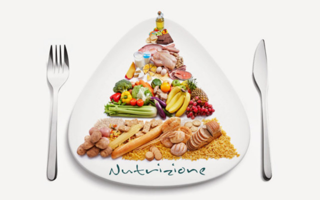 nutrizione ant