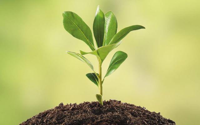 produzione sostenibile