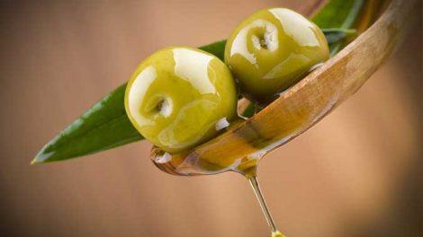 olive-verdi-470x264