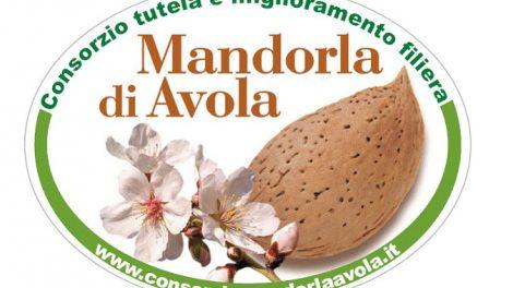 mandorla-avola-grande-470x264
