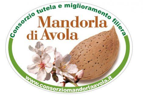 mandorla-avola-grande-470x313