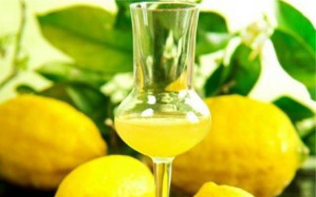 limoncello-ant