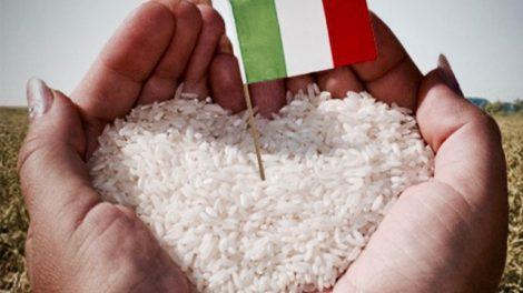 salviamo-riso-italiano-470x264