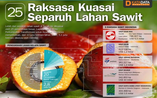 infografica olio palma