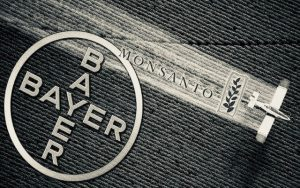 monsanto bayer 300x188