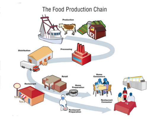 food production chaine