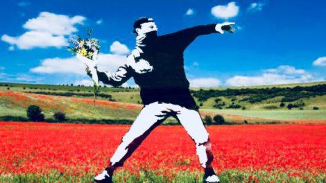 fiori-no-pesticidi-470x264