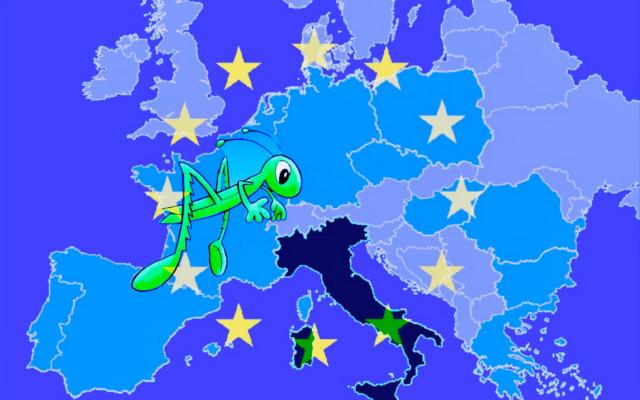 insetti europa