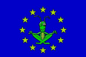 insetti-regole-europee-300x200