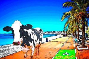 mucca al mare 300x200