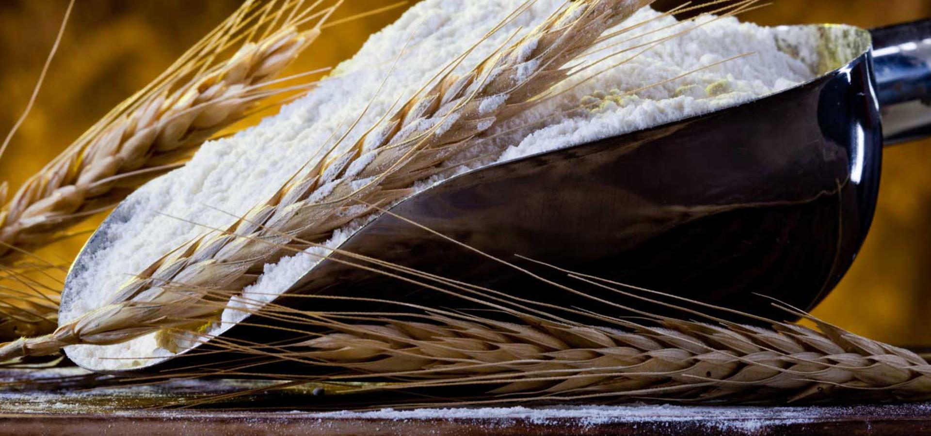gallery farine molini spigadoro5