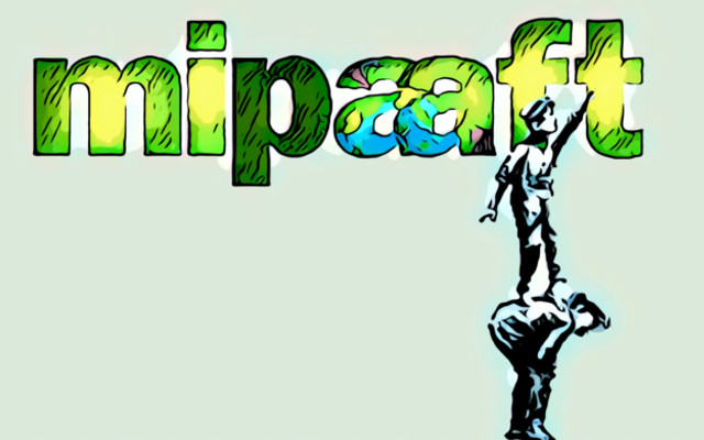 mipaaft 2