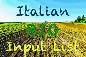italian input list 300x200